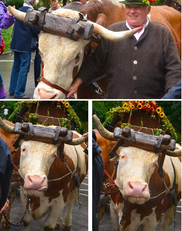 Oktoberfest Parade 1