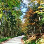 Autumn weather at its best austria attersee travelgram hiking autumn
